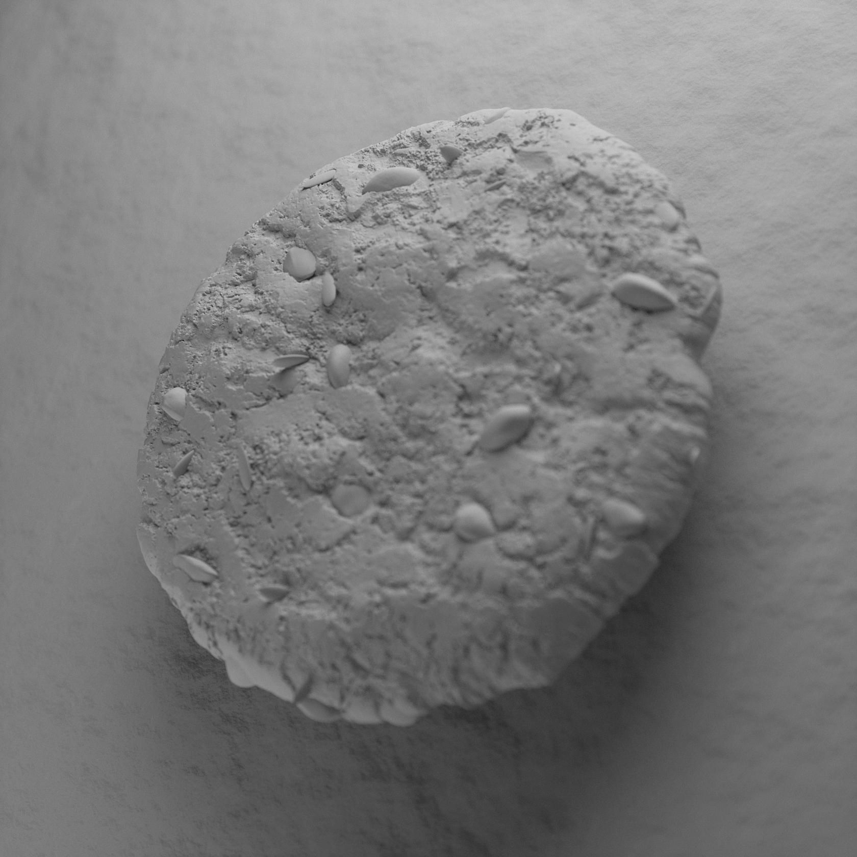 cookie-3d-render-03-berkgedik